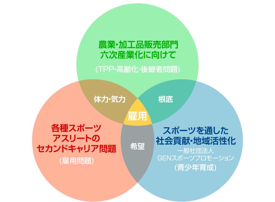3つの取組みイメージ